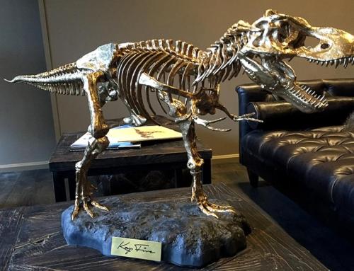 Kap Five – Dinosaurier